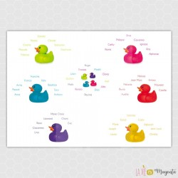 Plan de table -  Canards
