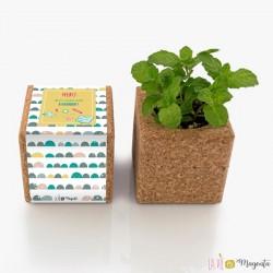 Cube menthe aimanté - Institutrice - Merci de m'avoir aidé à grandir
